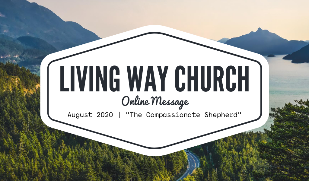 The Compassionate Shepherd | August 2020